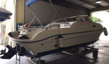 Ranieri Sea Lady 24 pieno